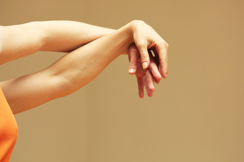 federicapaola-capecchi-danza-contact-workshop-fotografi